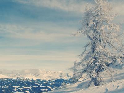Blick auf das Dachsteingebirge